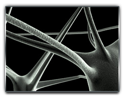 Dr_Jayakumar_New_Logo_Neurons_Design_.